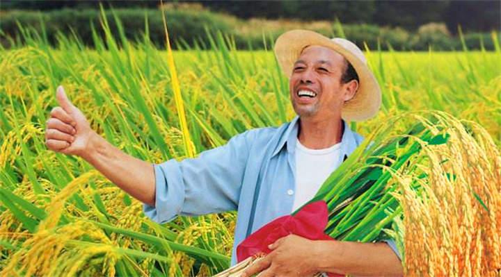 武汉农家乐|乐农湖畔生态园|武汉拓展培训|武汉好玩的农庄|武汉拓展山庄|武汉好玩的亲子游|武汉研学学生游|武汉周边一日游