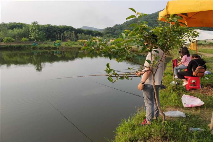 武汉好玩的农家乐湖边垂钓2.jpg